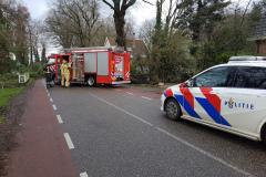 Boom-Langeveenseweg-Geesteren-Foto-1