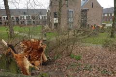 storm-Ciara-foto-clemens-brughuis-7